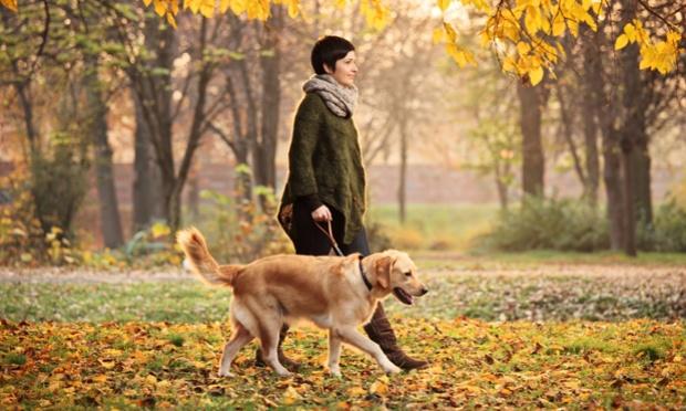 exercicio-divertido-para-emagrecer-caminhar-cachorro-53730